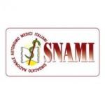 Аккумуляторы для мобильных телефонов Snami