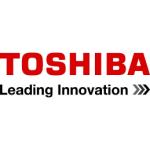 Аккумуляторы для цифровых фотоаппаратов Toshiba